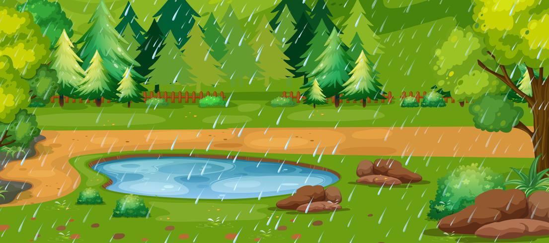 Scena di giorno piovoso con stagno nel parco