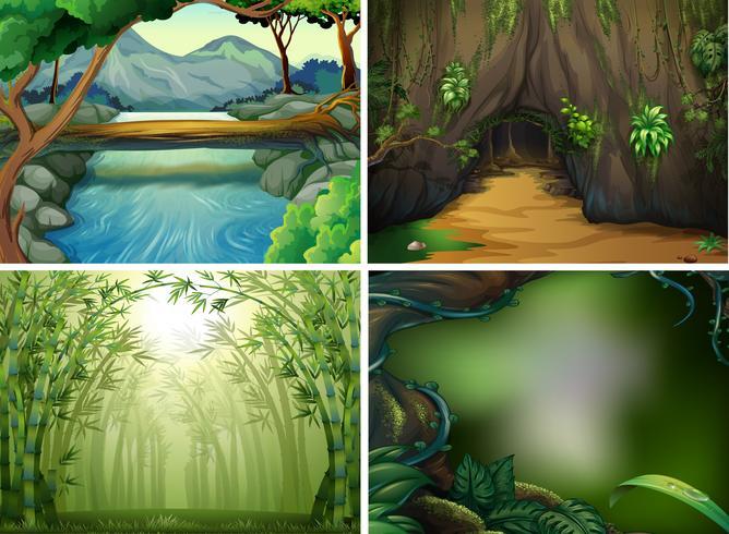 Quatre scènes de forêt différentes
