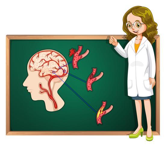 Arzt und menschliches Gehirn an Bord