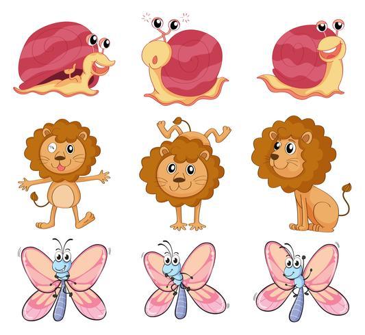En lejon, en snigel och en fjäril