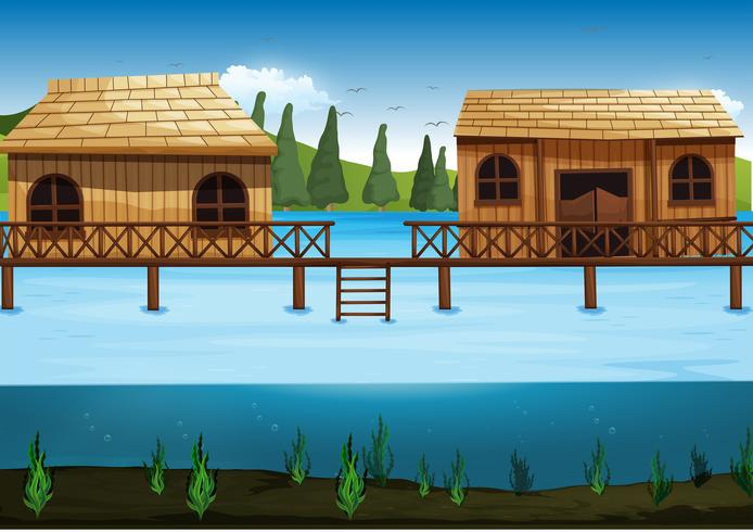 Scen med två hus i floden