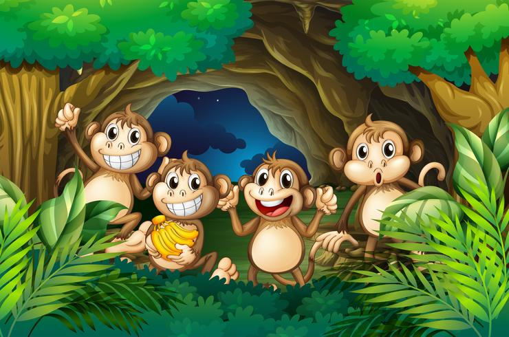 Macacos felizes na floresta profunda