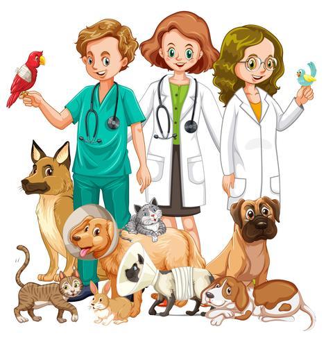 Veterinari e molti tipi di animali