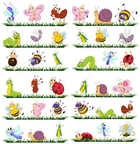 Diversi tipi di insetti sull'erba vettore