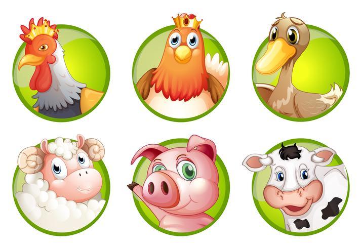 Animales de granja en insignias verdes
