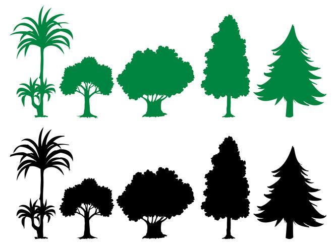 Jogo, de, silueta, árvore