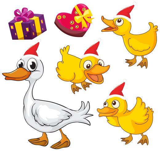 Tema de Natal com patos e presentes