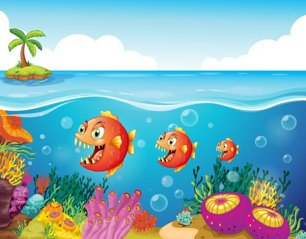 A school of fish near the coral reefs vector