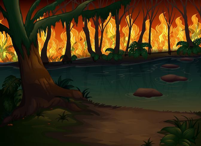 Una foresta con un disastro violento