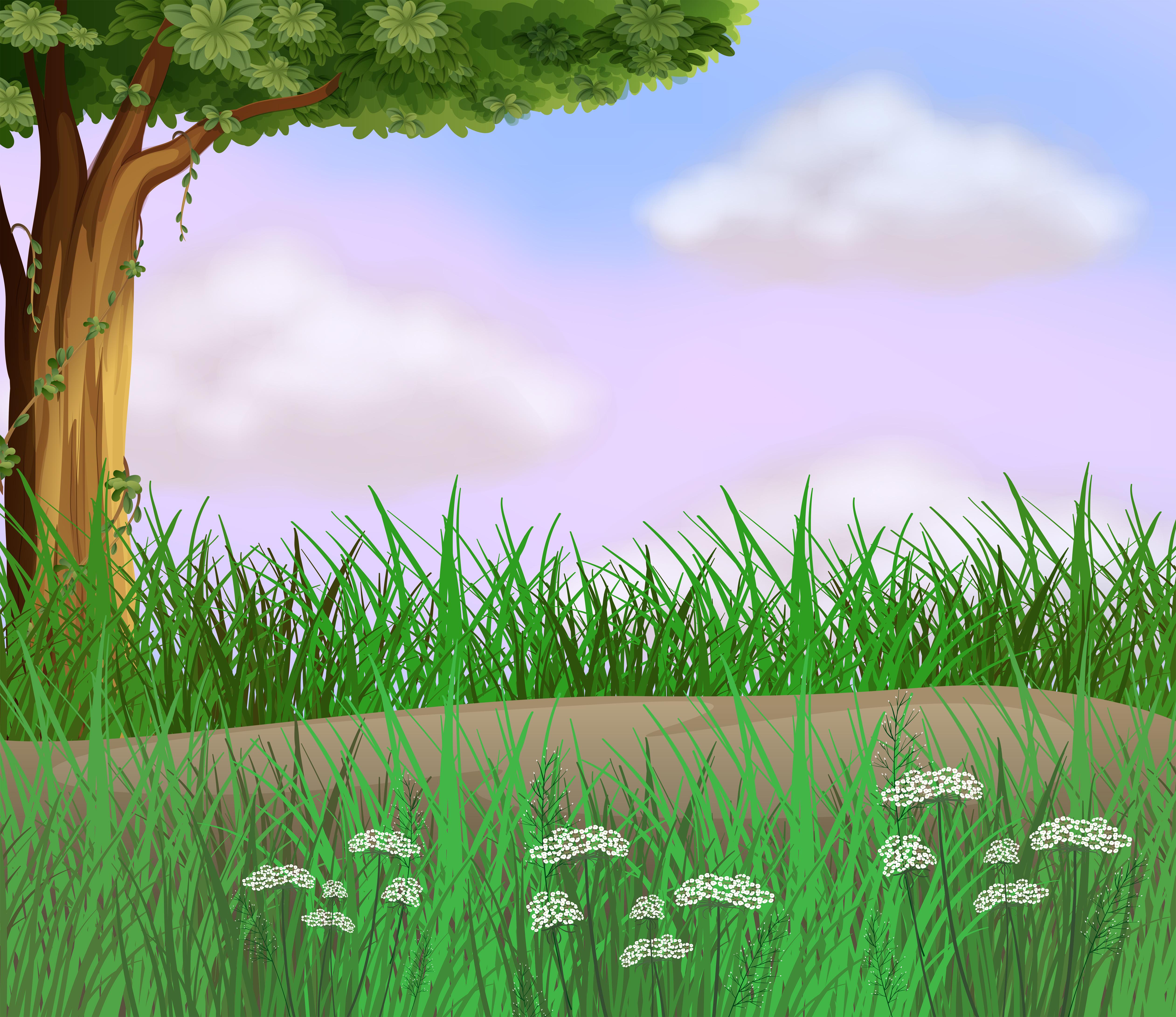 草原背景 免費下載   天天瘋後製