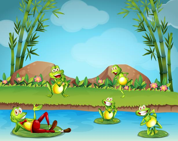 Cinq grenouilles vivant au bord de l'étang