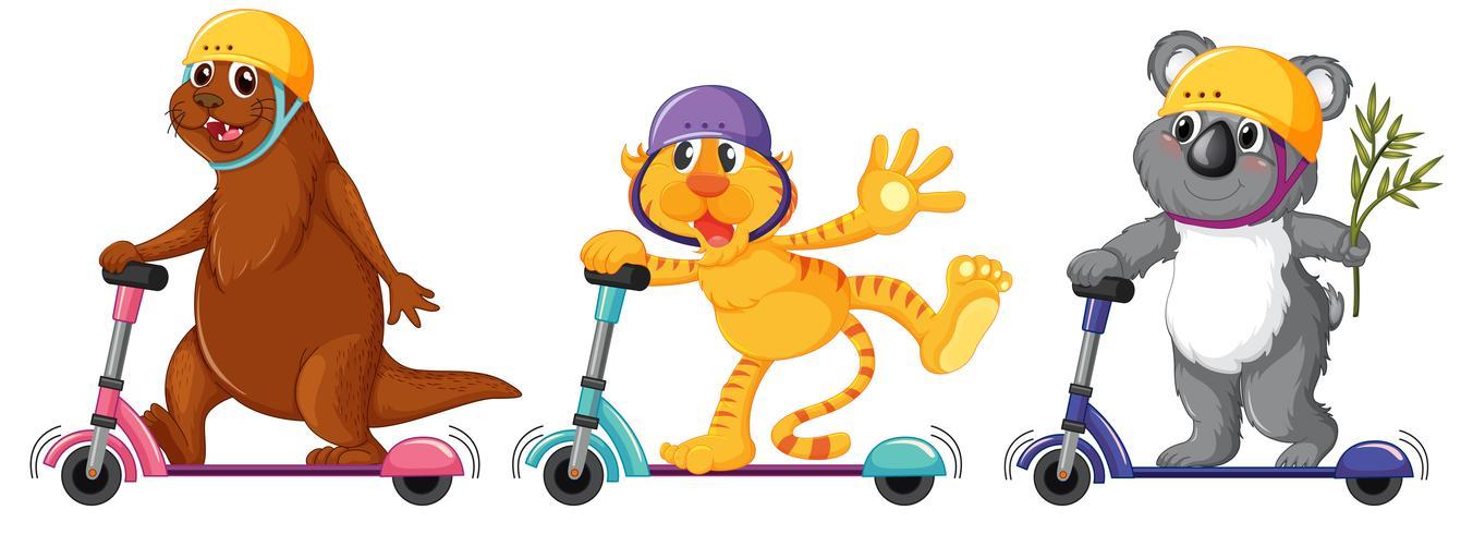 Set of animal playing kick scooter