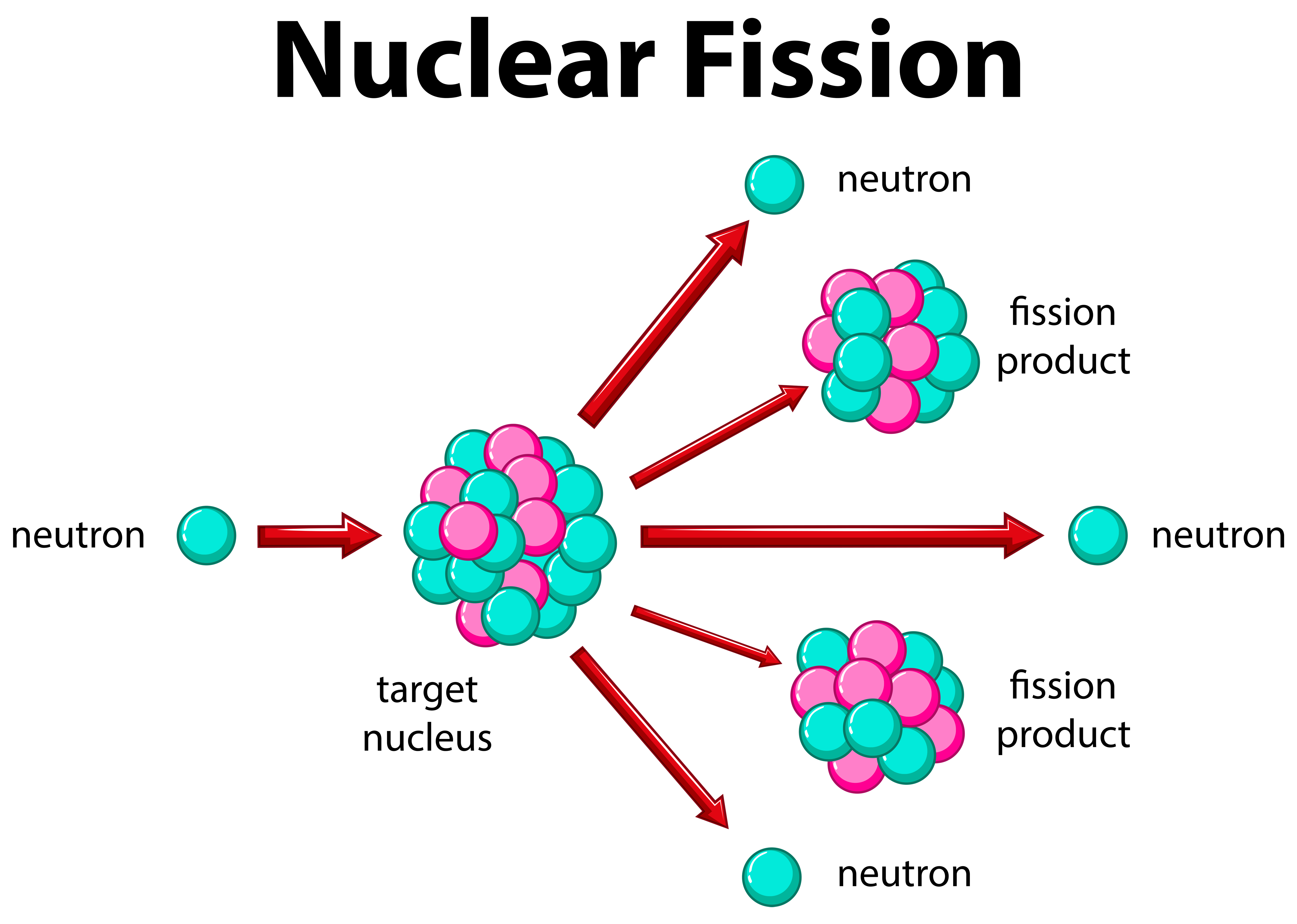 Diagram    showing nuclear    fission     Download Free Vectors