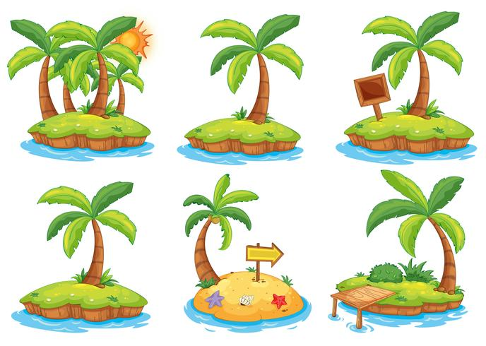 Islands with different signs vector
