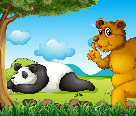 A white bear sleeping soundly and a brown bear under the tree