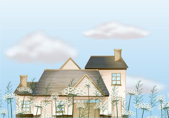 Uma casa grande