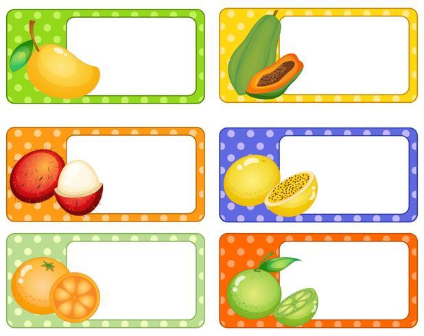 Etichette quadrate con frutti tropicali vettore