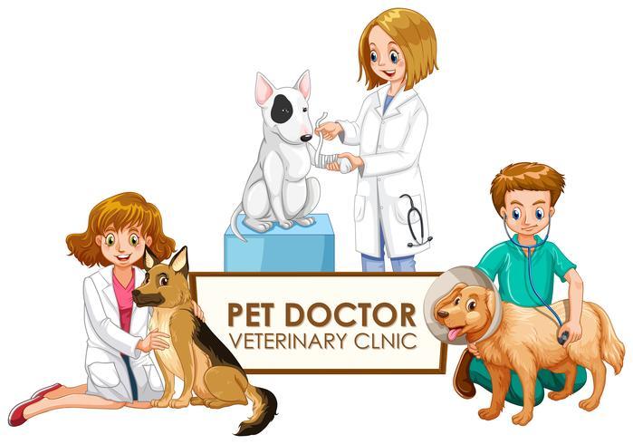 Médicos veterinarios con mascotas. vector