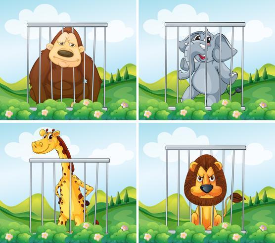 Animaux sauvages en cage vecteur