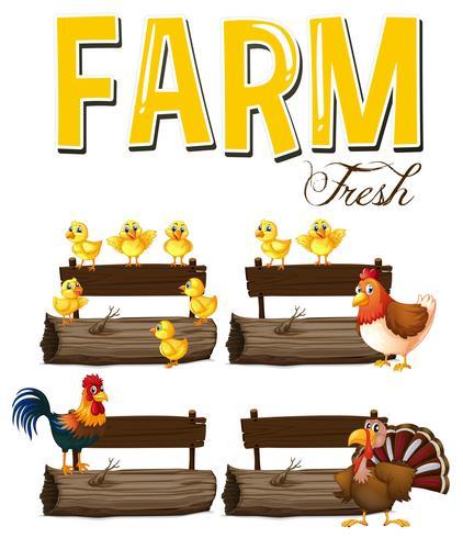 Animales de granja y signos.