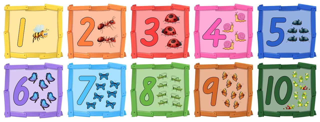 Set of insect number banner