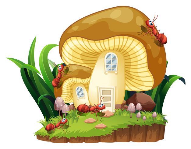 Formigas vermelhas e casa de cogumelo no jardim vetor