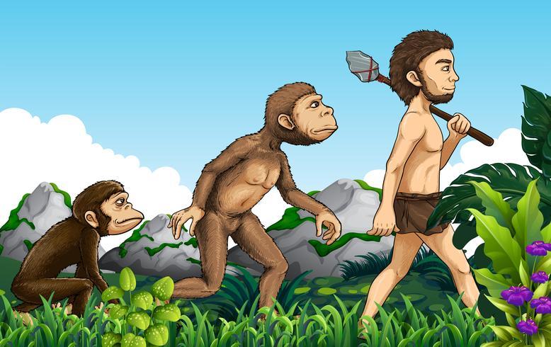 Evolução humana, em, natureza, fundo vetor