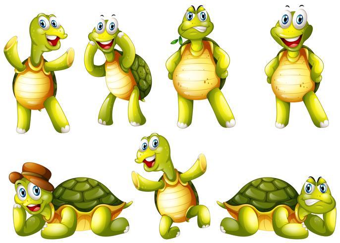 Leuke schildpadden met verschillende emoties vector