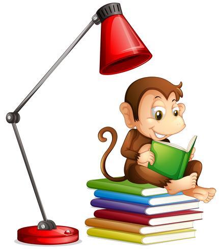 Macaco lendo livro sobre fundo branco