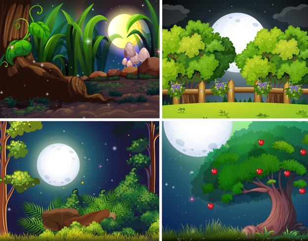 Vier nachtscènes van het bos en het park