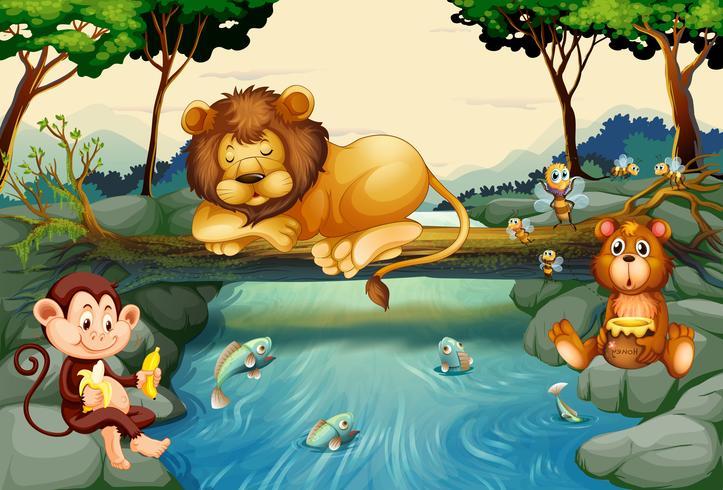Wilde dieren op de rivier