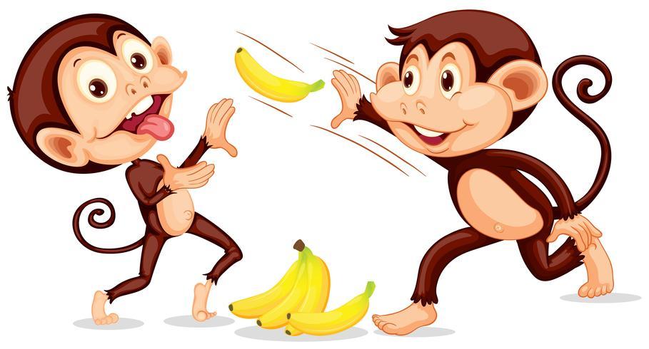 Macaco jogando uma banana