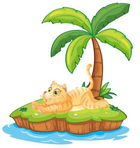 Gato preguiçoso na ilha isolada