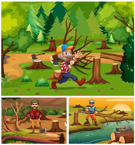 Tomas de madera trabajando en el bosque.