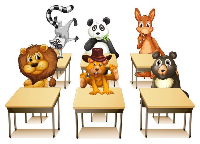 Animaux en classe