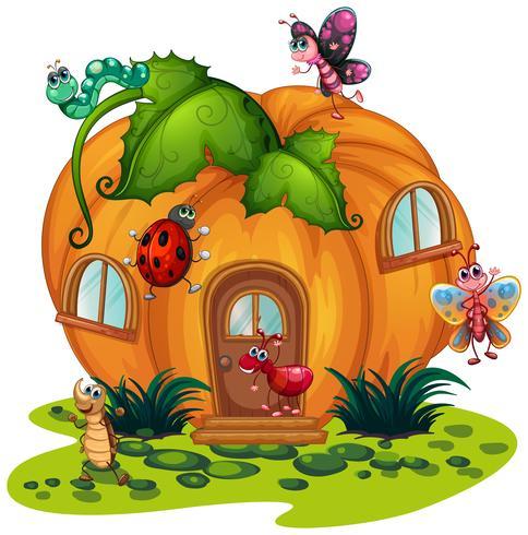 Casa di zucca con molti bug