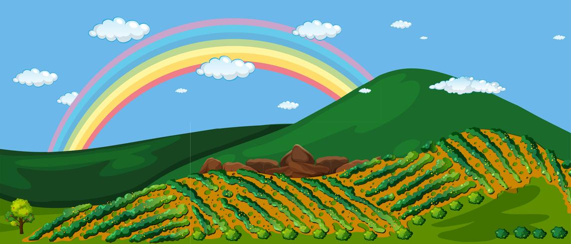 Schöner Bauernhof-Berg und Regenbogen