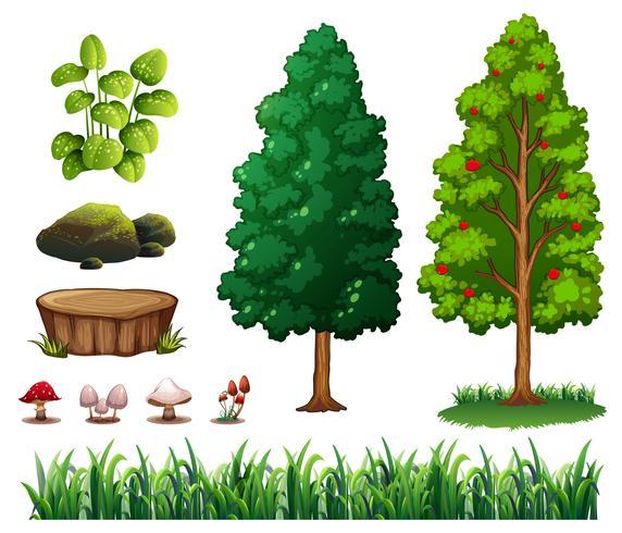 Um, jogo, de, floresta, elemento