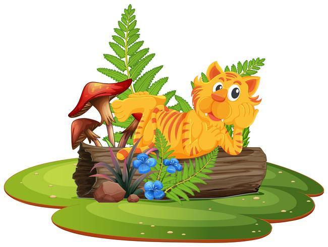 Tiger auf Baumstamm