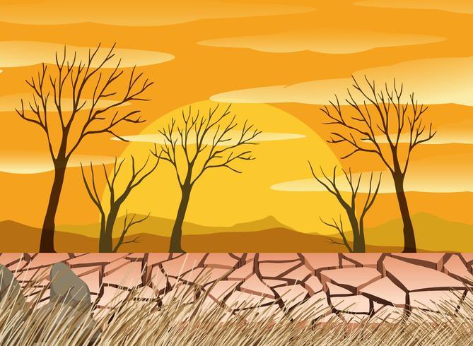 Een droogte woestijn scence