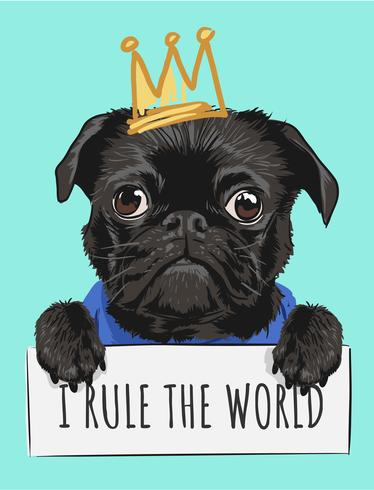 black pug dog holding sign and crown