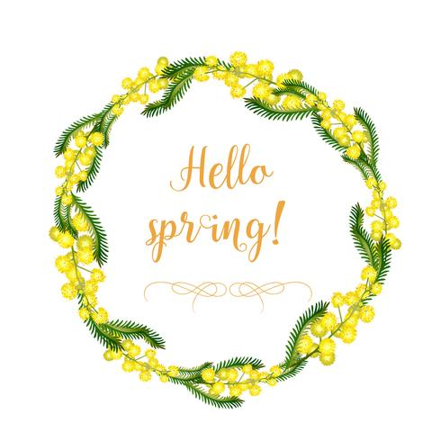 Una corona decorativa de flores y hojas de mimosa y los elementos de la corona por separado. Flores amarillas delicadas de la primavera y del verano. Objetos aislados en un fondo blanco.
