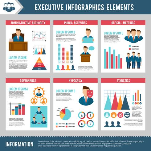 Executive Infographics Set