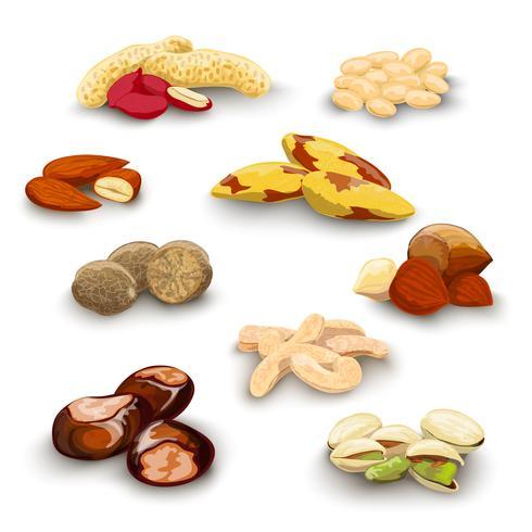 Set decorativo de nueces