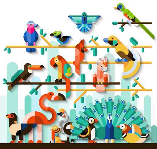 Conjunto de pájaros de la selva vector