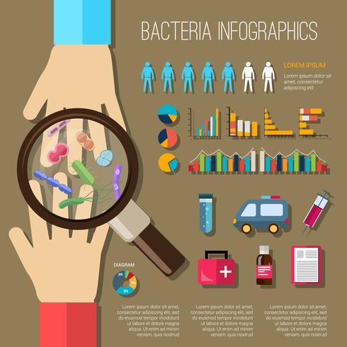 Conjunto de infografías de bacterias