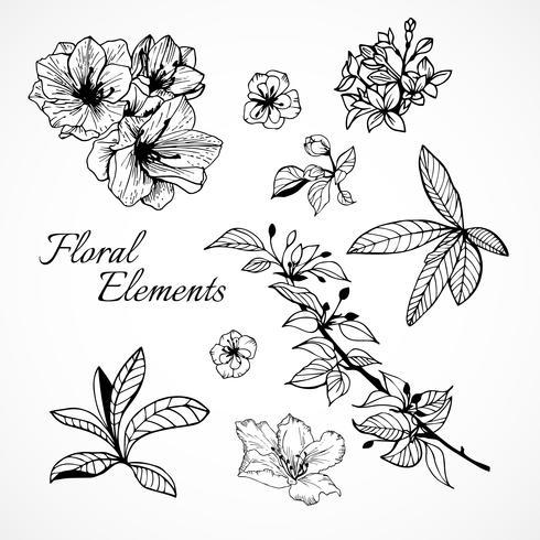 Set av blommiga element