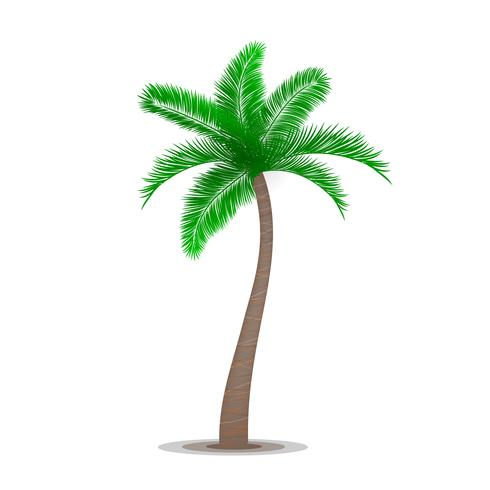 Tropisk palmträd symbol