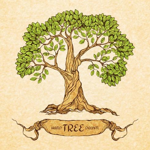 Grönt träd med plats för text