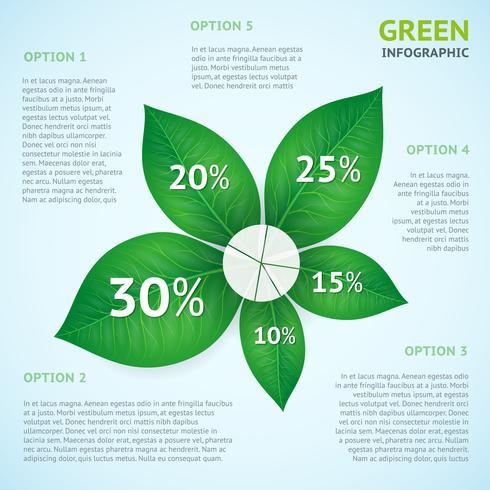 Concetto di eco verde infografica vettore